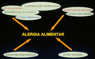 Figura 1.Esquema dos vários fatores envolvidos na gênese da AA.