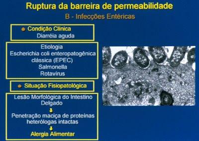 Figura 19. Esquema gráfico da sequência fisiopatológica da provocação deAAdevido à infecção porEscherichia colienteropatogênica.