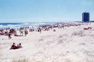 Figura 7- Vista da Praia Brava.
