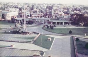 Figura 19- Vista desde o andar da Gastropediatria para a entrada principal do hospital e visão parcial da cidade de Haedo ao fundo.