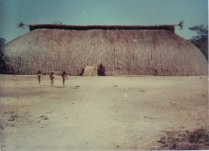 Figura 4- Imagem de uma oca da aldeia Kamaiurá. Em geral, em cada oca vivem cerca de 3 a 4 famílias.