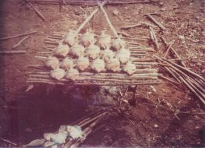 Figura 20- Os peixes são assados diretamente na brasa ou moqueados.