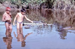 Figura 29- O pequi depois de colhido é colocado em cestas de bambu e depositado no lago para ser ingerido de acordo com a necessidade de cada pessoa. Esta é a fonte de vitamina A do Xingu.