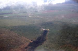 Figura 7- Vista aérea da região próxima ao PIX, evidenciando o avanço do desmatamento nas vizinhanças, restando apenas uma pequena mancha verde de floresta.