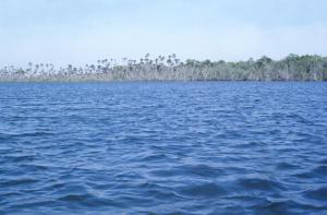 Figura 31- Vista aérea da aldeia Kuicuru próxima de um dos mais lindos lagos da região.