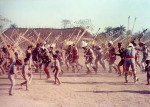 """Figura 8- Dança tribal na festa do """"Jawari"""", onde toda a aldeia participa ativamente."""