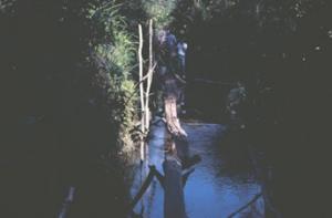 Figura 6b- Equipe médica atravessando uma pinguela.