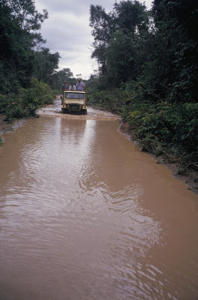 Figura 24- Visão da trilha que liga o Posto Leonardo a uma aldeia em uma época de chuvas na região.