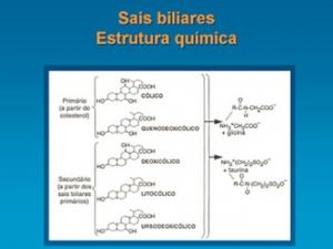 Figura 4- Estrutura química dos ácidos biliares primários e secundários. Observar nas cadeias laterais a conjugação com glicina ou taurina.