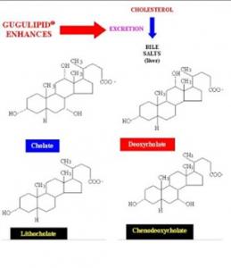 Figura 8- Estruturas químicas dos sais biliares primários (Cólico e Quenodeoxicólico) e secundários (Litocólico e Deoxicólico).