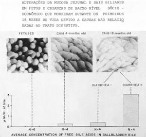 Figura 10- Ação deletéria dos sais biliares desconjugados sobre a mucosa do intestino delgado.