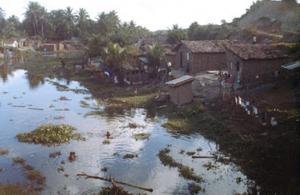 Figura 5- Uma favela brasileira, verdadeira fossa negra a céu aberto, e as crianças brincando nas águas contaminadas.