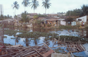 Figura 6- Uma típica favela brasileira, esta no nosso Nordeste.
