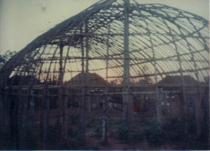Figura 8- As ocas em construção.