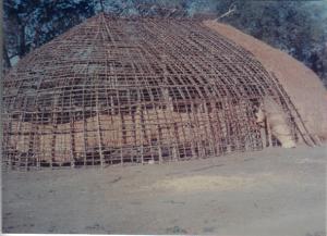 Figura 9- As ocas em construção.