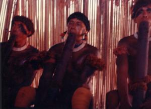 Figura 17- Homens índios no interior da casa das flautas em plena atividade.