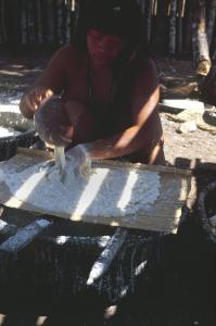 Figura 3- Mulher índia lavando e peneirando a massa da mandioca.