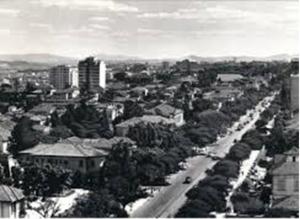 Figura 19- Avenida Paulista na década de 1950.