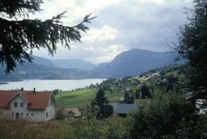 Figura 5- A viagem em direção a Bergen no oeste do país passa por lindas paisagens de campo.