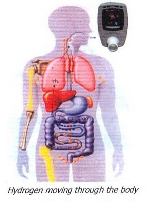 Figura 1- Referência Ledochowiski M. Journal of Breath Research 2: 1-9, 2008.