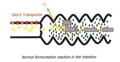Figura 2- Referência Eisenmann & cols. Journal of Breath Research 2: 1-9, 2008.